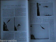 High Divers Diving Animal Soldiers Military Mascots Lancers Rare Articles 1901