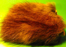 MUSK RAT FUR ON SKIN. Fly Tying.