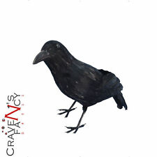 Feathered Realistic Black Crow Halloween Party Prop Fancy Dress Decoration New
