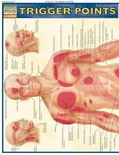 Quick Study: Trigger Points by Staff BarCharts Inc. (2007, Book, Other)