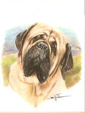 Bull Mastiff Bullmastiff Art Print by USA Artist Barbara Walker