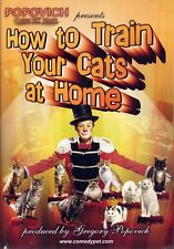 gregory popovich   HOW TO TRAIN YOUR CATS AT HOME    DVD