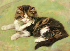 Classical oil painting Pretty charming kitten sitting in spring field on canvas