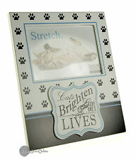 Cats Brighten our Lives Cat Photo Frame Gift BB117