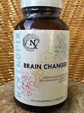 BRAIN CHANGER ~ Aniracetam Nootropic~ Enhanced Cognition and Mood~ 120 Capsules