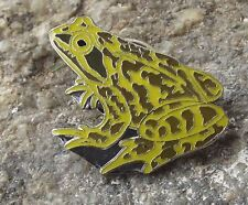 Common Brown Green Bullfrog Frog Amphibian Protection Preservation Pin Badge