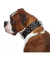 Casual Canine Leather Deluxe Spiked Dog Collar  27-Inch  Black New