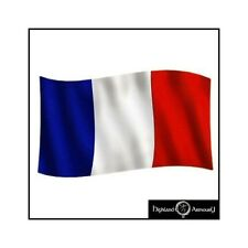 5 x 3 FT FRANCE FRENCH NATIONAL FLAG Euro CUP Large Flags 150x90cm