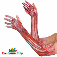 Adults Sinister Surgery Bloody Gloves Halloween Fancy Dress Costume Accessory