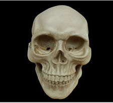 Lifesize Realistic Resin Replica Human Skull Medical Model Halloween Decoration