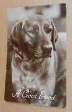 """Postcard Animals Dog """" A Good Friend """" RPPC unposted with message xc4"""