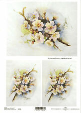 CIALDE di riso per decoupage scrapbooking, Painted White FLOWERS A4 ITD R276