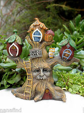 Miniature Dollhouse FAIRY GARDEN ~ Pixie ENCHANTED FOREST Tree House Cottage