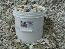GEMSTONE MIX BUCKET!  2 gallons of rough mine ore with assorted gems & minerals!