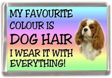 "Cavalier King Charles Spaniel Fridge Magnet ""My Favourite Colour is Dog Hair"""