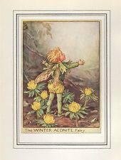 FLOWER FAIRIES VINTAGE PRINT : THE WINTER ACONITE FAIRY