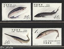 Sturgeon protected species set of 4 mnh stamps China 1994-3 fish