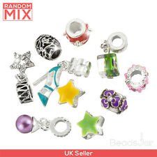 Large Hole Dangle Charm Pendant Beads - Random Mix Pack of 10 (C14/5)
