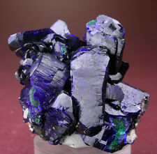 RICH BLUE AZURITE CRYSTALS GROUP w MALACHITE, MILPILLAS, MEXICO