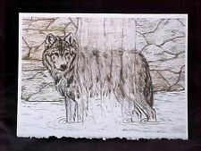 "Wolf Waterfall Art Print Card Frameable Blank Card with Envelope NEW 5"" x 7"""