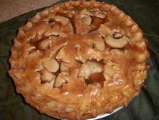 Fake Pie Fall Apple Fake Food Pie