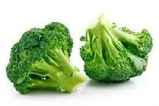 50 BROCCOLI GREEN QUEEN SEEDS,  OVS- 820,  VEGETABLES