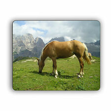 Stallion Computer Mouse Pad Hunting Nature Wildlife Horse