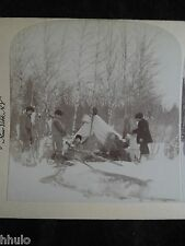 STA026 Chasseur Canadien neige peau bête 1894 STEREO Photo Stereoview albumen
