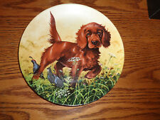 1988 - Missing The Point - The Irish Setter - Field Puppies - Knowles Plate