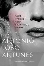 What Can I Do When Everything's on Fire? by António Lobo Antunes (2008,...