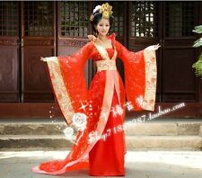 Gorgeous Chinese Ancient Infanta Princess Costume Lace Trail Robe Dress One Size