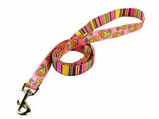 "Pink Stripes With Paisley Lead - 48"" Long x 3/8"" Wide"