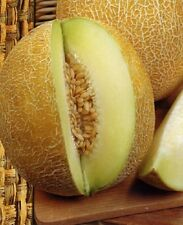 A 1g (approx. 32) melon seeds EMIR H sweet and juicy,superior for the breakfast
