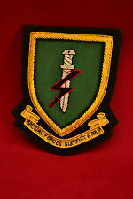 Special Forces Support Group (SFSG) Blazer Badge Gold bullion