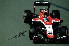 Max CHILTON SIGNED Marussia F1 Driver Autograph 12x8 RARE Photo AFTAL COA