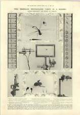 1910 Mr Bull Invention 2000 Photos Per Second, Good Drainage System Cairo Mousky