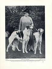 BORZOI DUCHESS OF NEWCASTLE AND DOGS LOVELY ORIGINAL DOG PRINT PAGE FROM 1934