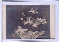 VINTAGE REAL PHOTO CATS KITTENS IN TRUNK POSTCARD LEON HUBER PARIS #3315 PM 1924
