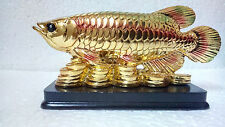 FENG SHUI AROWANA FISH ON LUCKY COINS IN GOLDEN COLOR  FOR PROSPERITY AND LUCK