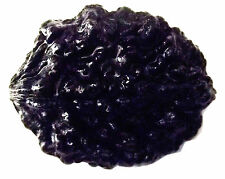 very rare very hard to find two face (do mukhi) black Rudraksha
