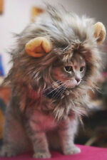 Furry Pet Costume Lion Mane Wig Cat Halloween Dress Up With Ears Festival Party*