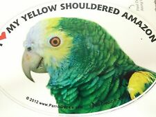 Yellow Shouldered Amazon Parrot Exotic Bird Vinyl Decal Bumper Sticker