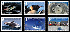 British Antarctic 2016 Enviromental Protection 6v MNH