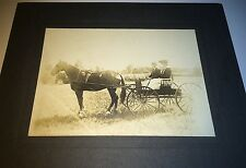 Antique Victorian American Horse & Cart! Outdoor Landscape C.1899 Cabinet Photo!