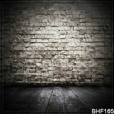 Brick 10'x10' Computer-painted (CP) Season Scenic background backdrop BHF165
