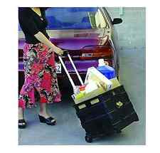 Grocery Cart On Wheels Folding With Handle Portable Storage Teacher Rolling Best