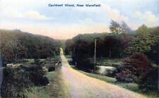 Mansfield Cauldwell Wood unused old postcard Montgomery