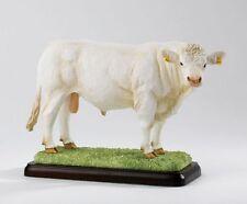 Border Fine Arts Studio - Charolais Bull Farming Cattle Figurine Ornament  24047