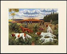 IRISH RED AND WHITE SETTER SHOOTING SCENE GREAT DOG PRINT MOUNTED READY TO FRAME