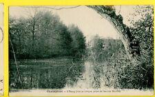 CPA Rare CHAMPLOST (Yonne) L'ÉTANG Vue Artistique prise de l'Ancien MOULIN